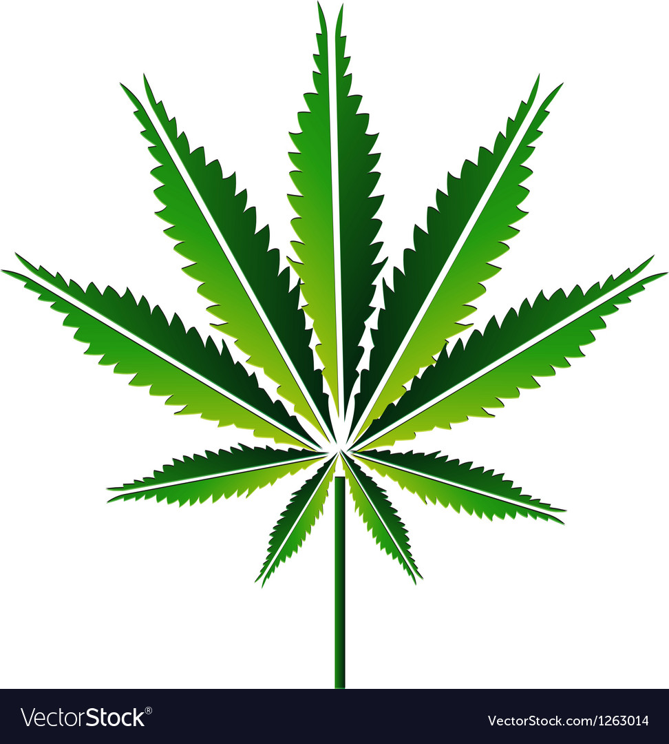 Green hemp leaf or cannabis leaf vector | Price: 1 Credit (USD $1)