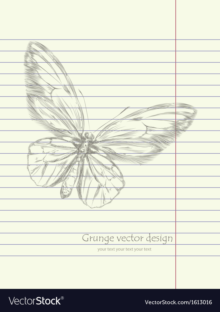 Hand drawing sketch butterfly vector | Price: 1 Credit (USD $1)