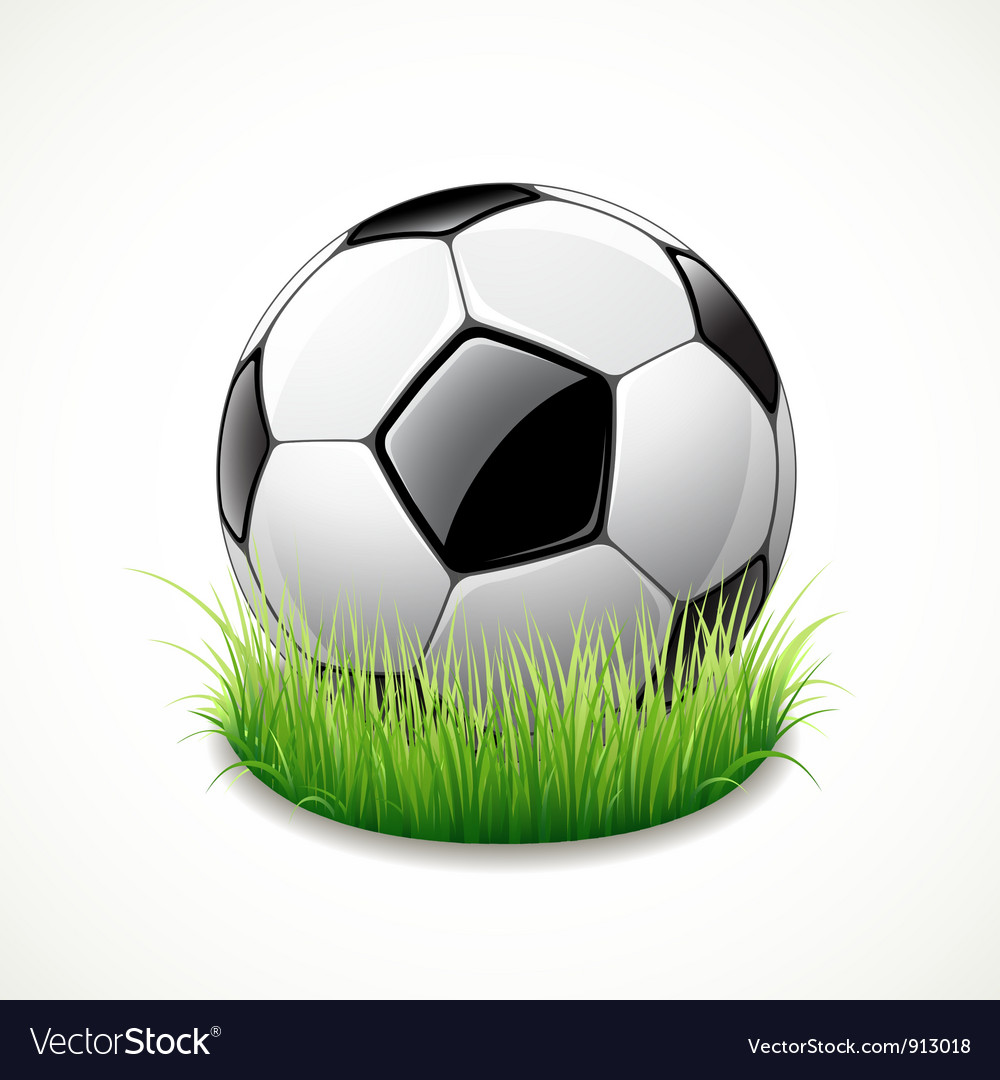 Football on green grass vector | Price: 3 Credit (USD $3)