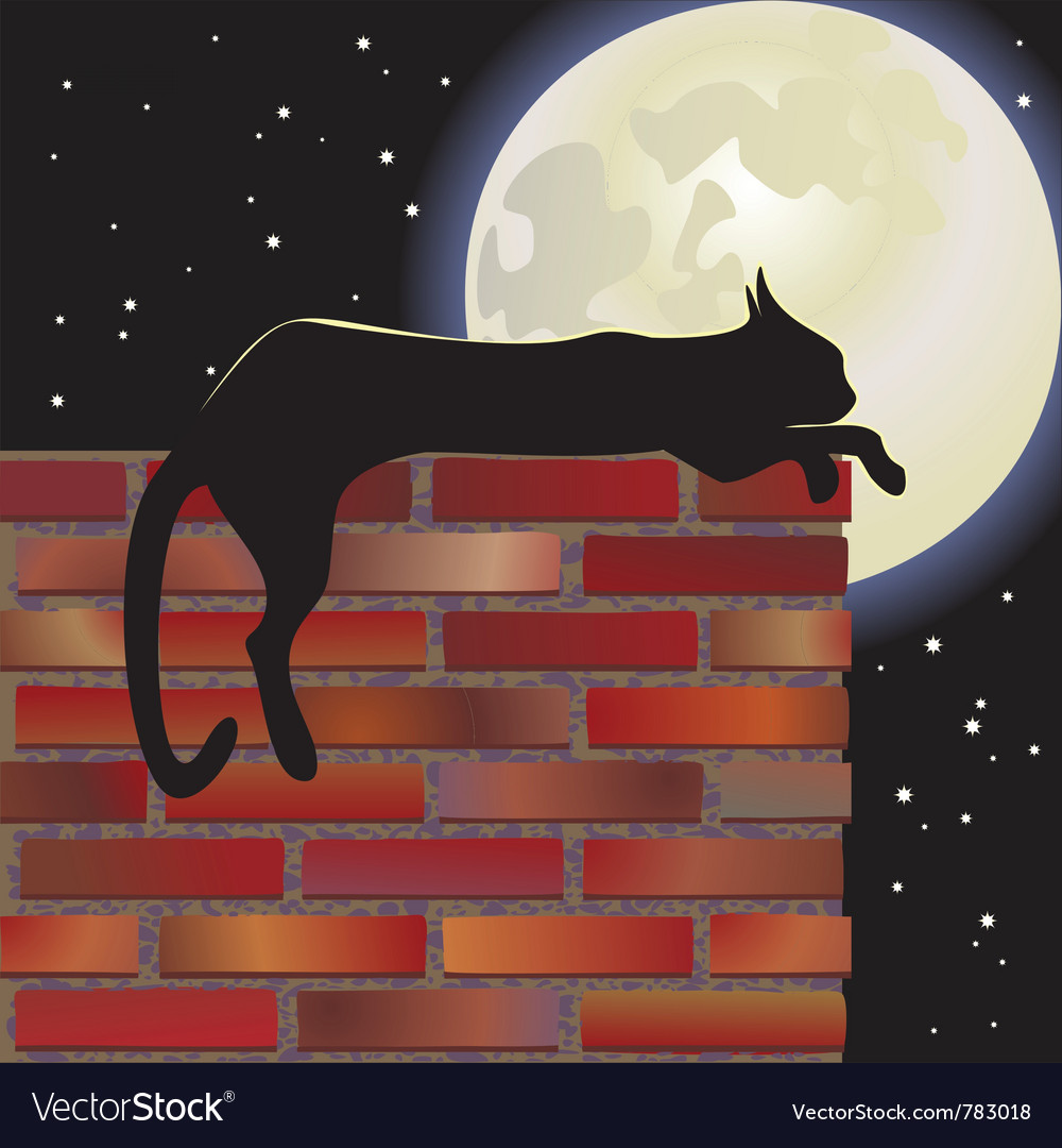 Nocturnal cat and moon vector | Price: 1 Credit (USD $1)