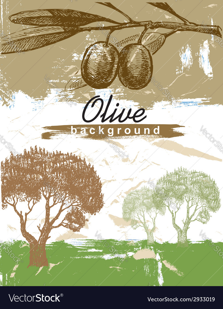 Hand drawn olive vector | Price: 1 Credit (USD $1)