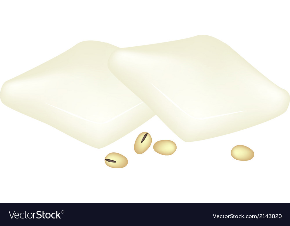 Tofu and soybeans on a white background vector | Price: 1 Credit (USD $1)