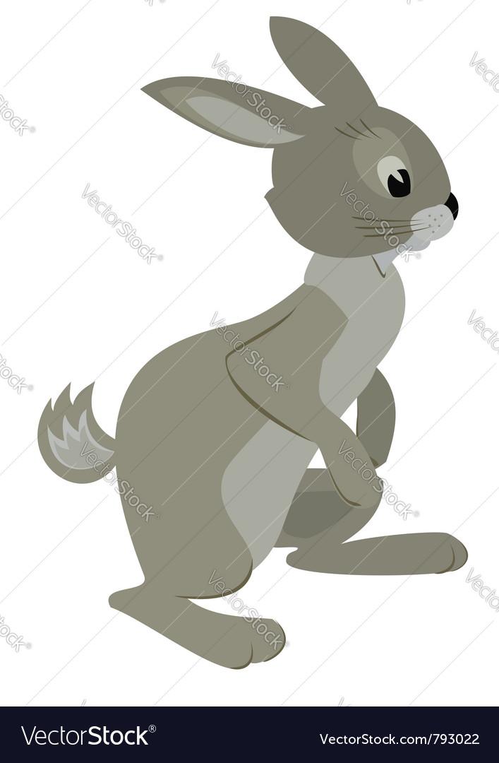 Gray rabbit vector