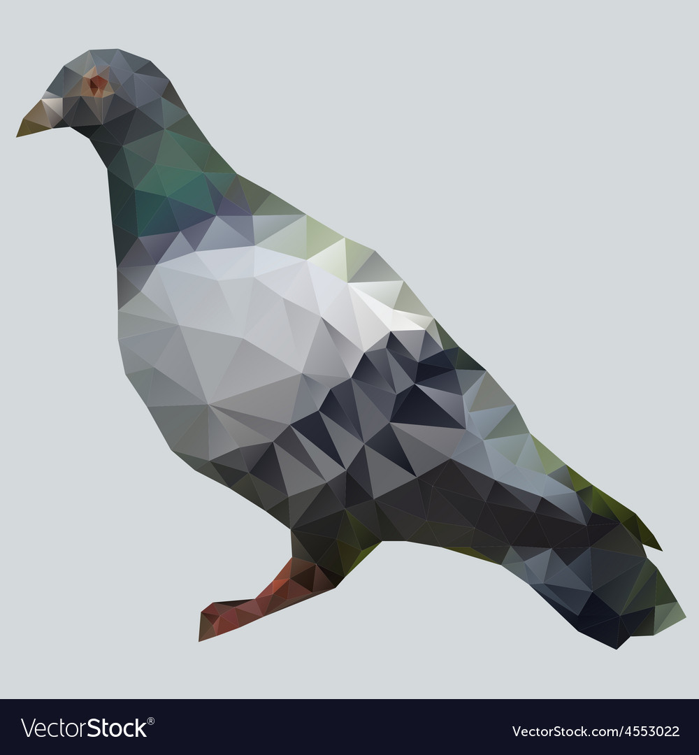 Pigeon polygon vector | Price: 1 Credit (USD $1)