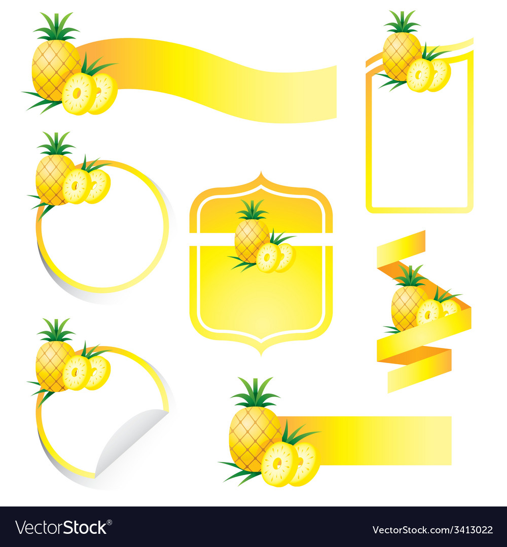 Pineapple label set vector | Price: 1 Credit (USD $1)