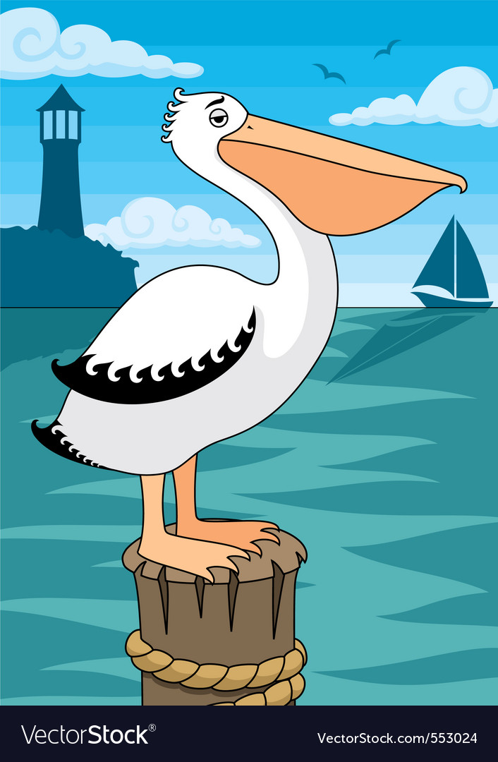 Pelican vector | Price: 1 Credit (USD $1)