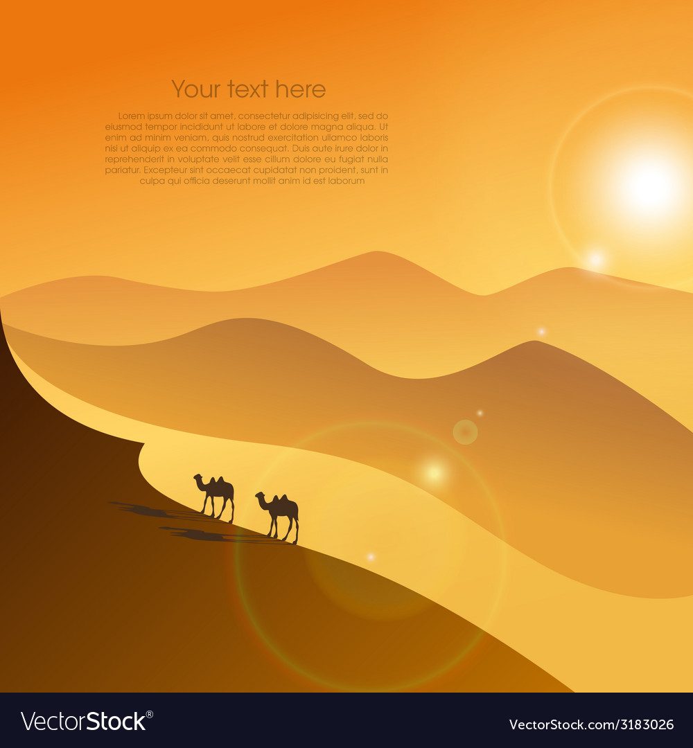 Two camels in desert vector | Price: 1 Credit (USD $1)