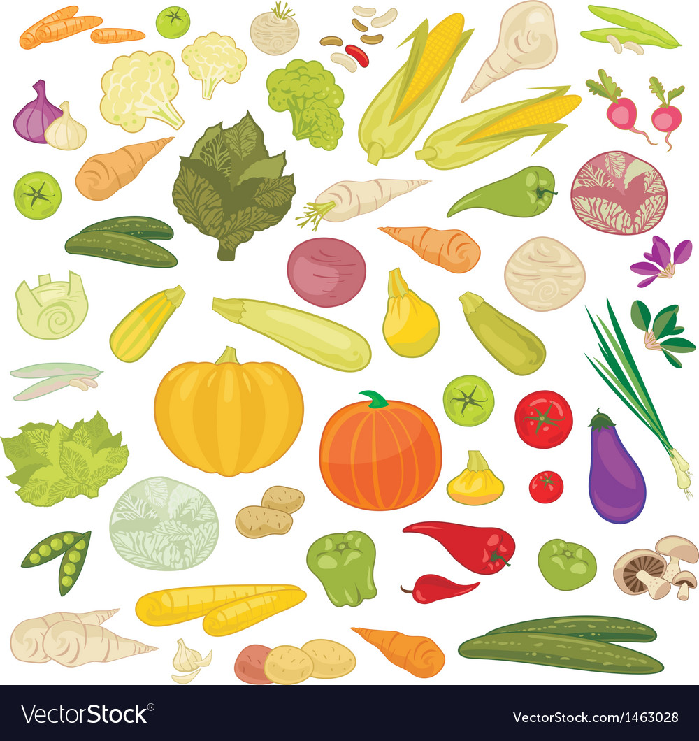 Vegetables set vector | Price: 3 Credit (USD $3)