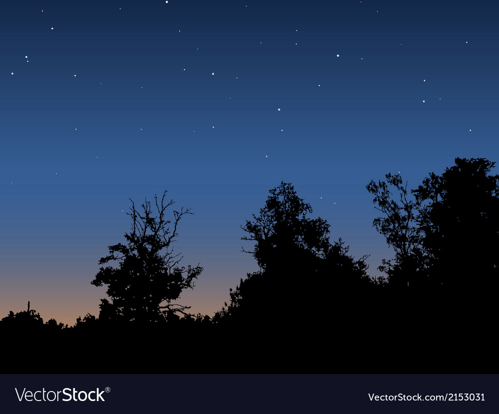 Dawn sky vector | Price: 1 Credit (USD $1)