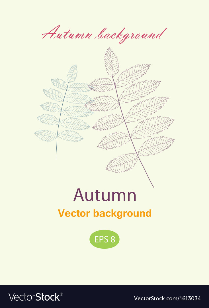Autumnal greeting card with leave vector | Price: 1 Credit (USD $1)
