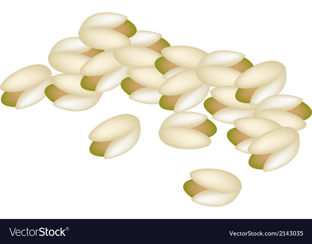 A stack of pistachio nuts on white background vector | Price: 1 Credit (USD $1)