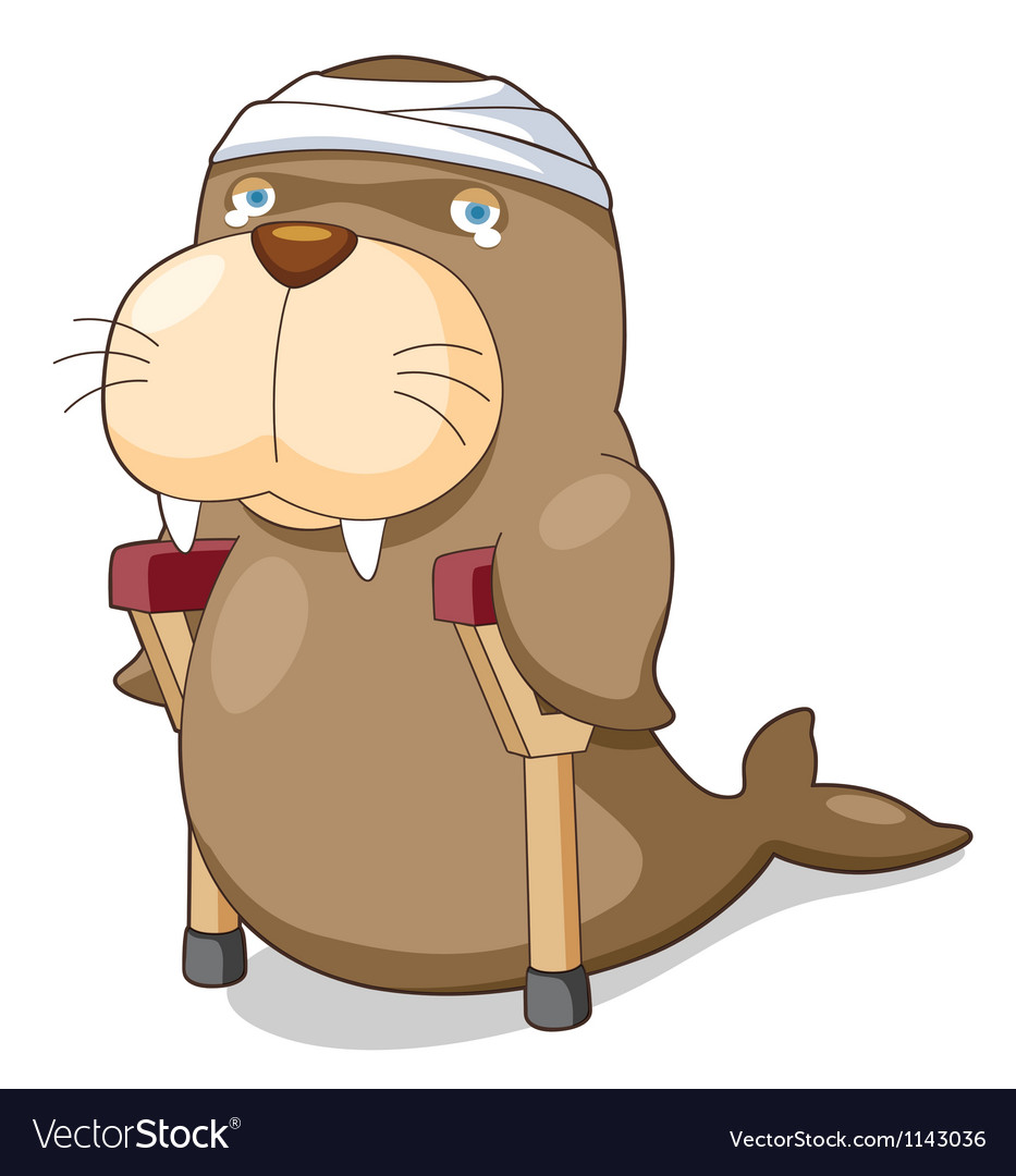 Cartoon sea lion be injured vector | Price: 1 Credit (USD $1)