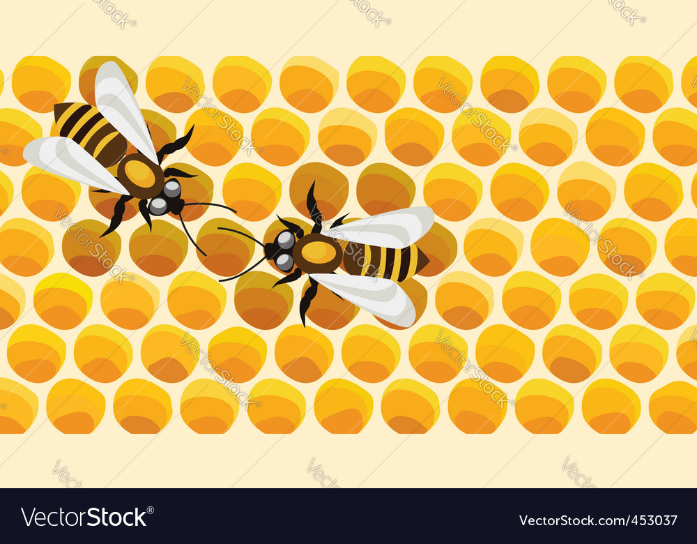 Working bees on honey cells vector | Price: 1 Credit (USD $1)