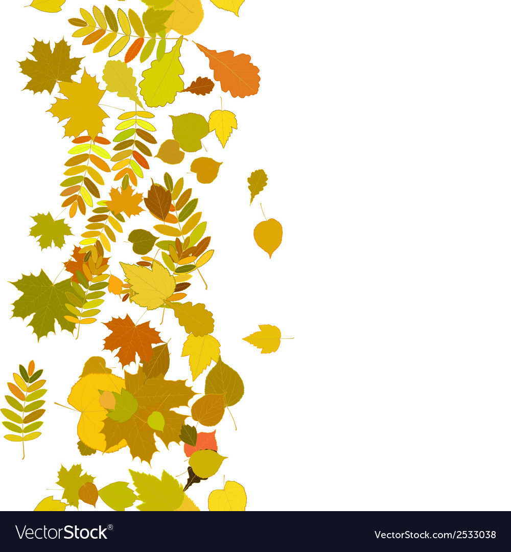 Autumn background with colorful leaves vector   Price: 1 Credit (USD $1)