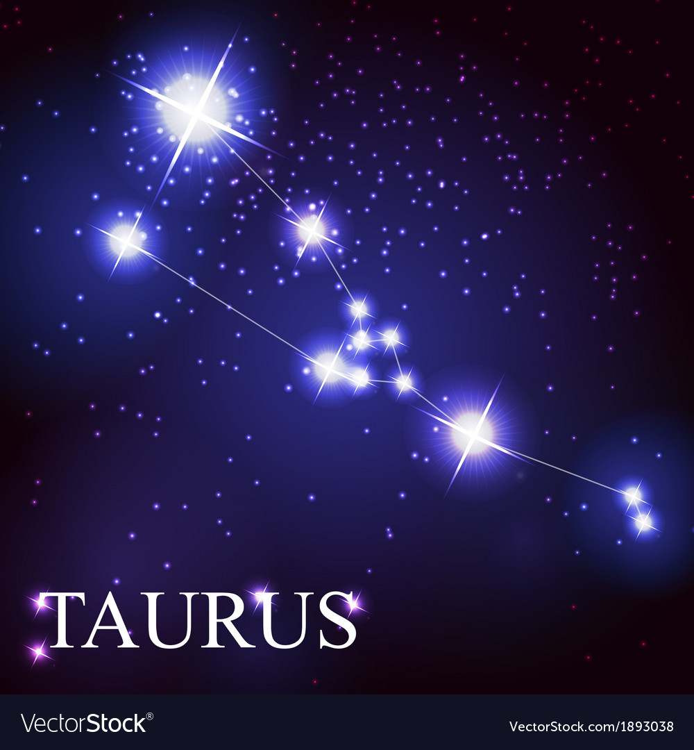 Taurus zodiac sign of the beautiful bright stars vector | Price: 1 Credit (USD $1)