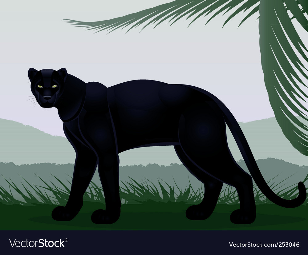 Black panther vector | Price: 3 Credit (USD $3)