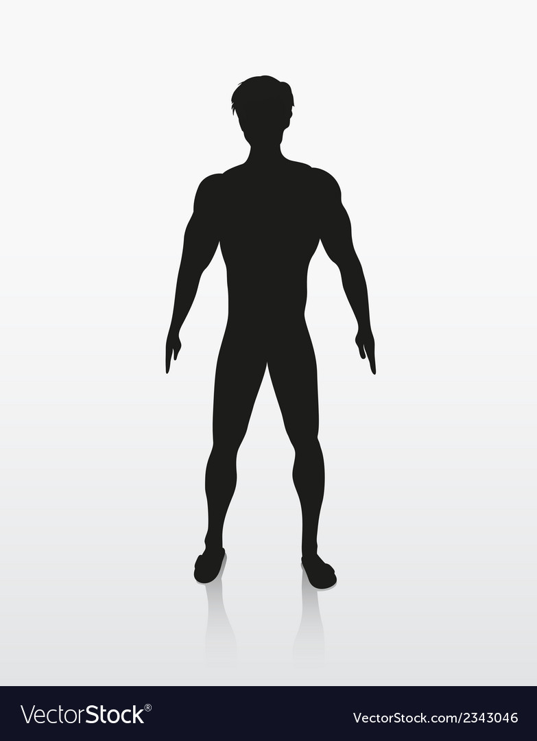 Silhouette of the human body vector | Price: 1 Credit (USD $1)