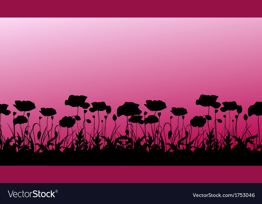Silhouettes of poppy vector | Price: 1 Credit (USD $1)