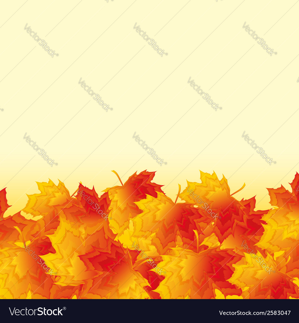 Autumn background with orange maple leaf fall vector | Price: 1 Credit (USD $1)