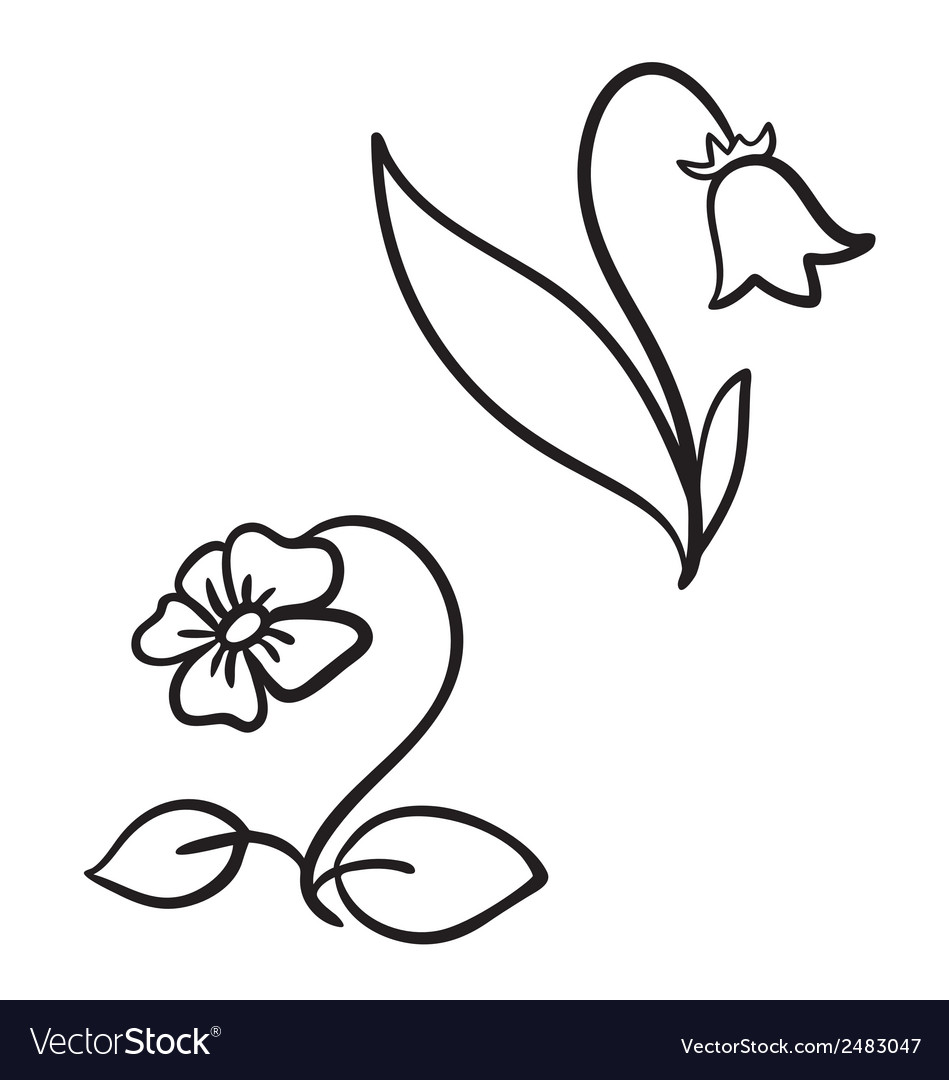 Two flowers vector | Price: 1 Credit (USD $1)