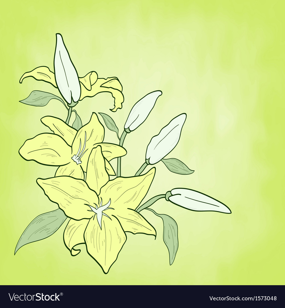 Background with green flower lily spring theme vector | Price: 1 Credit (USD $1)
