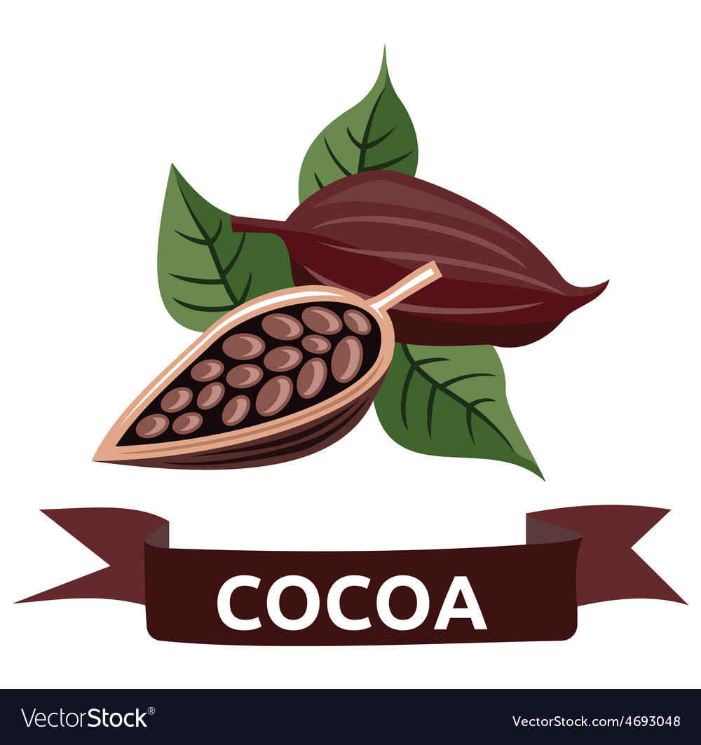 Cocoa resize vector | Price: 1 Credit (USD $1)