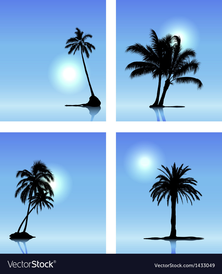 Set of palm tree silhouettes vector | Price: 1 Credit (USD $1)