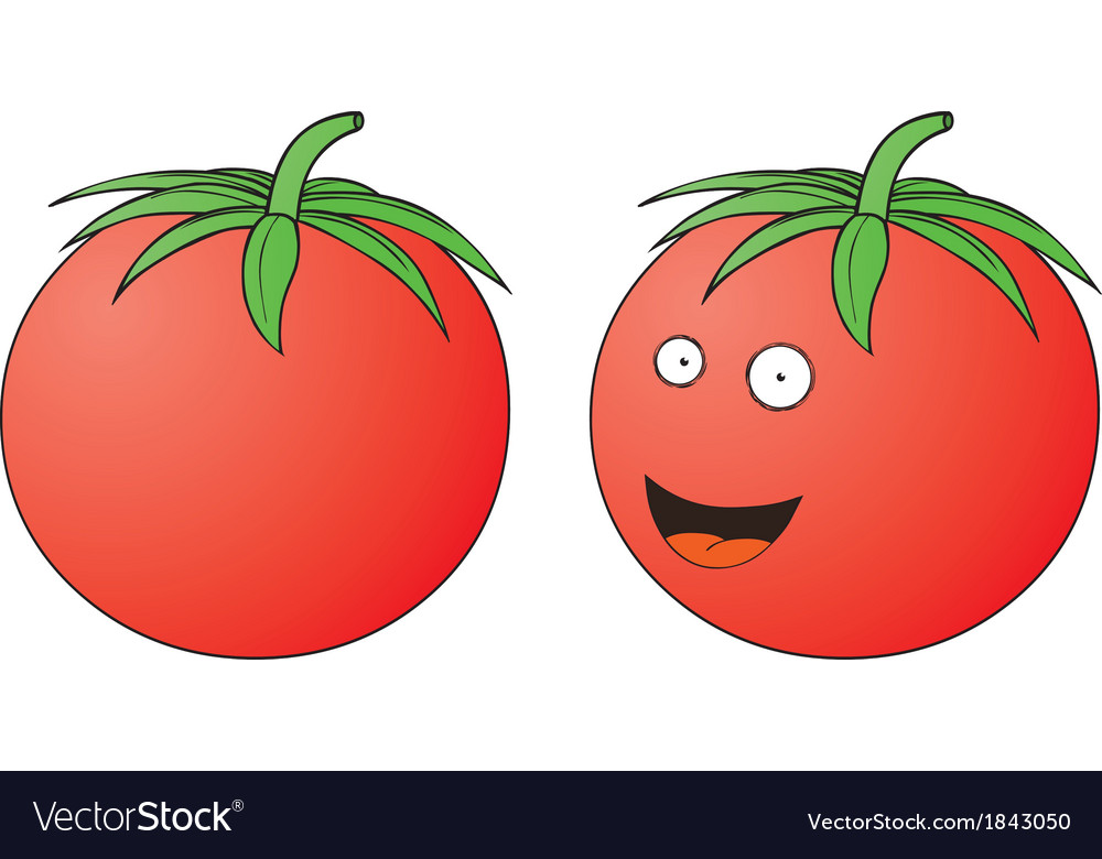 Smiling tomato vector | Price: 1 Credit (USD $1)