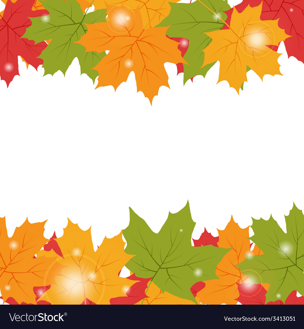 Autumn background with maple leaves vector | Price: 1 Credit (USD $1)