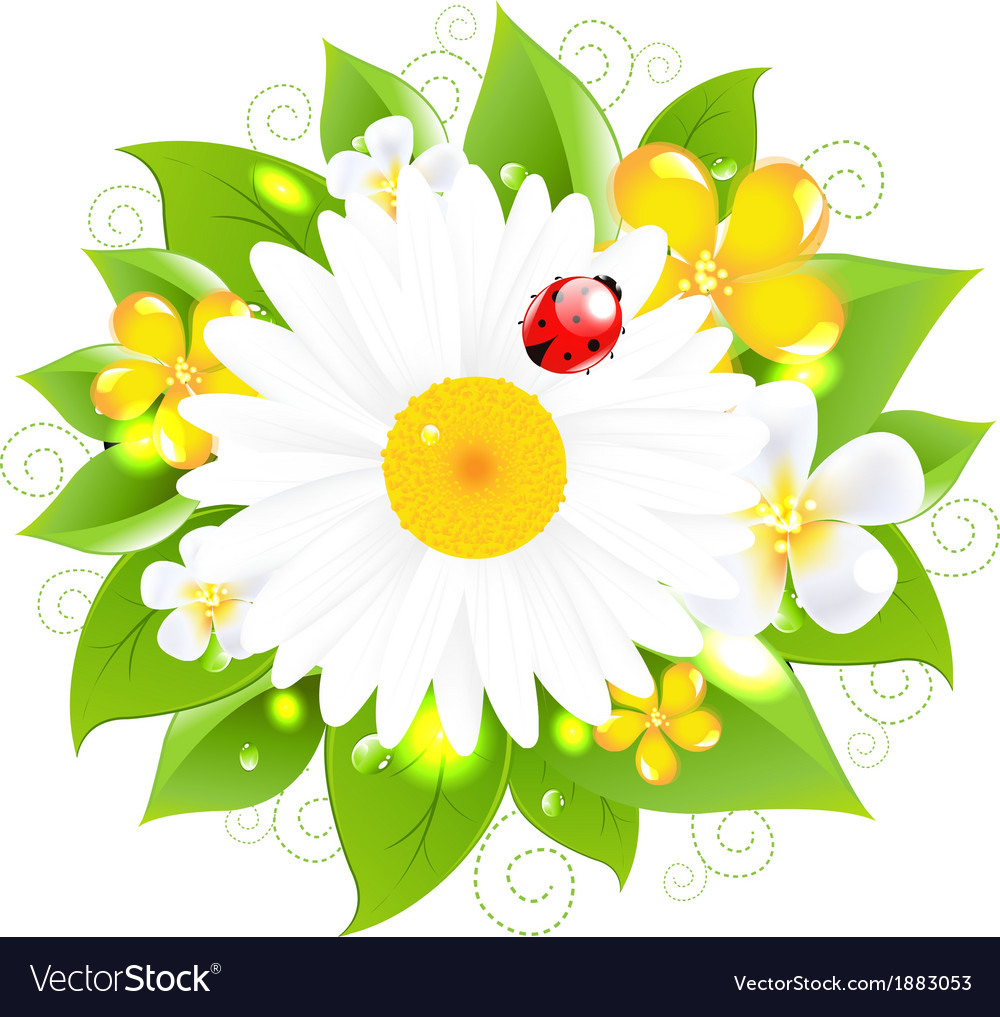 Flowers for design vector | Price: 1 Credit (USD $1)