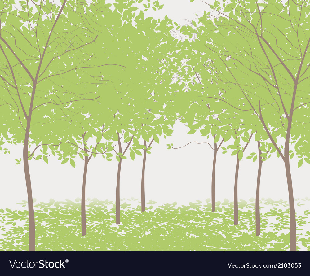Trees in the park vector | Price: 1 Credit (USD $1)