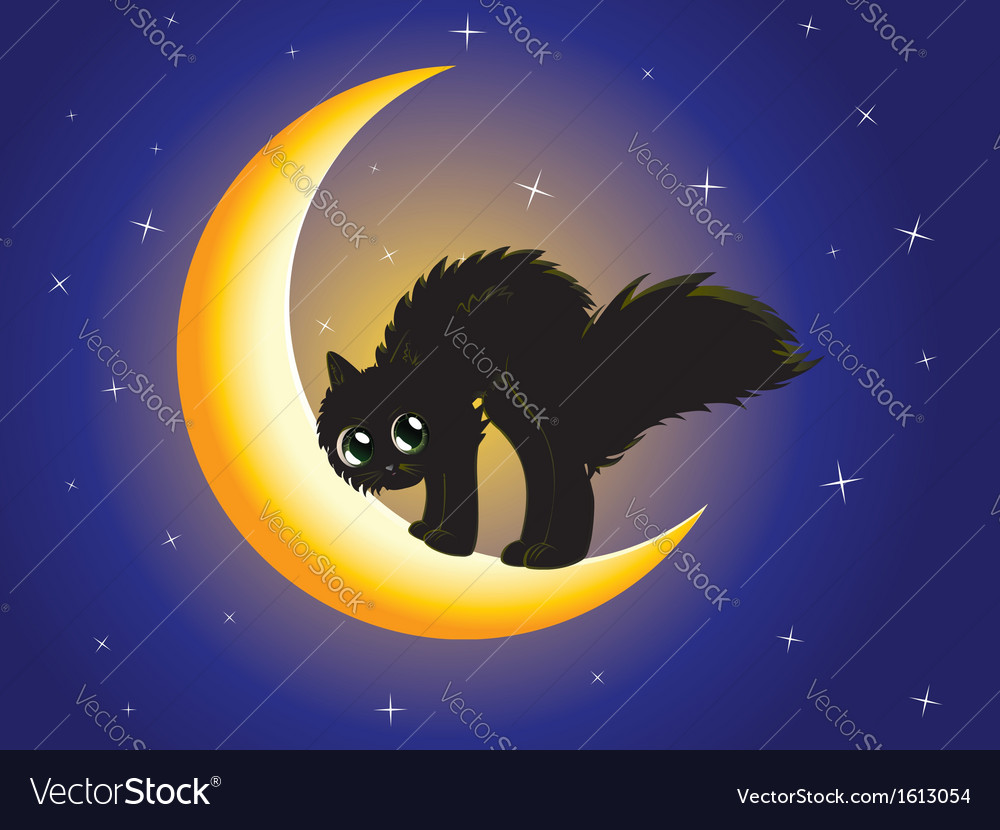 Black cat on moon vector | Price: 1 Credit (USD $1)