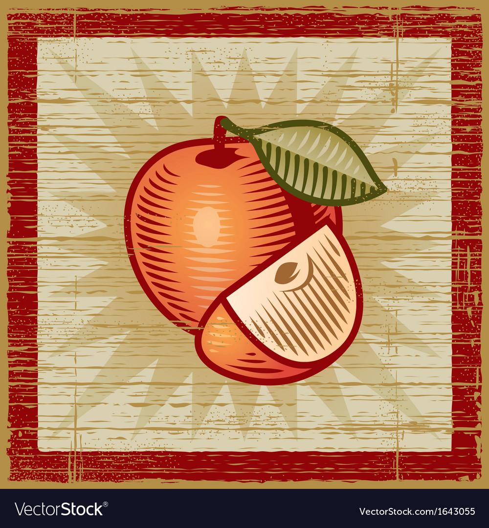 Retro apple vector | Price: 1 Credit (USD $1)