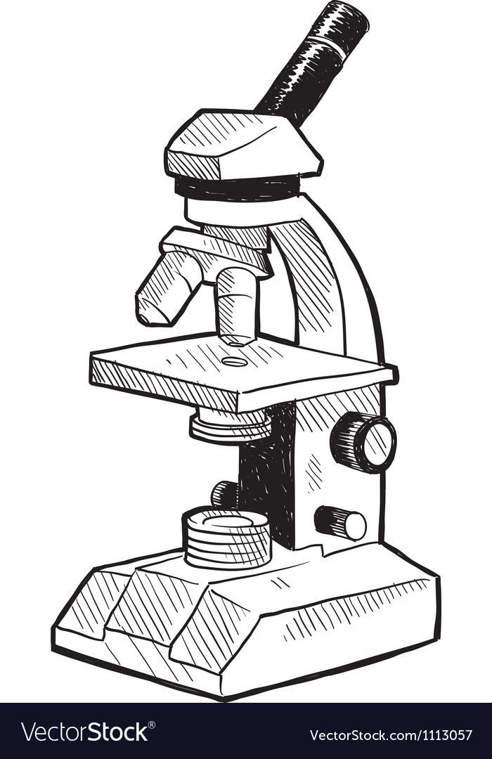 Doodle microscope vector | Price: 1 Credit (USD $1)