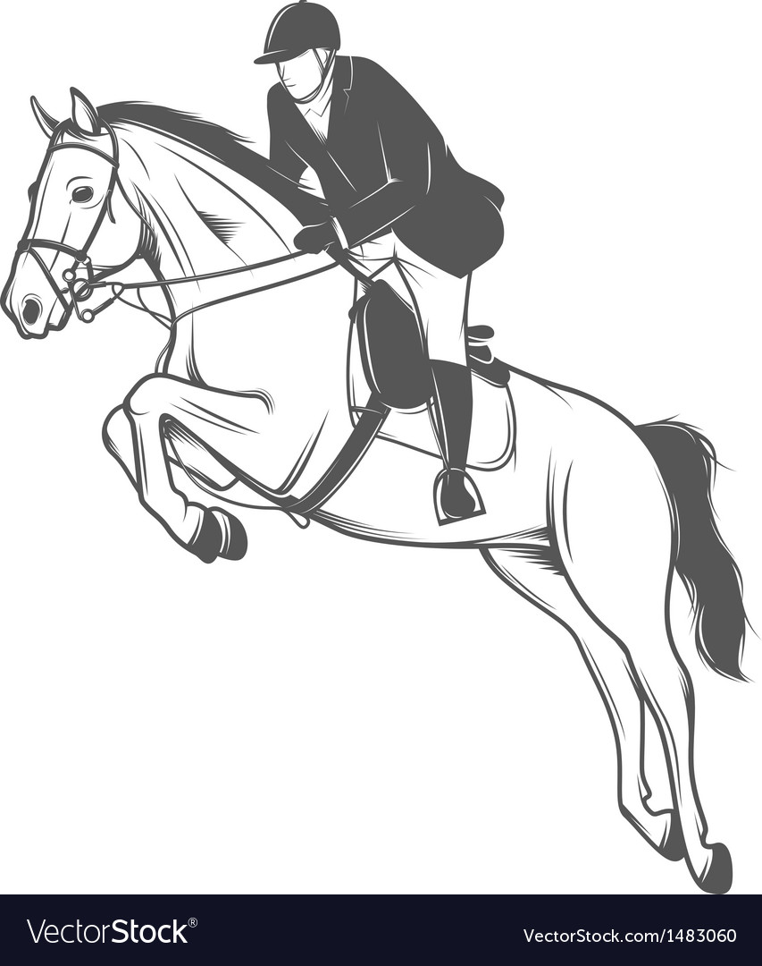 Equestrian sport jockey on a jumping horse vector | Price: 1 Credit (USD $1)