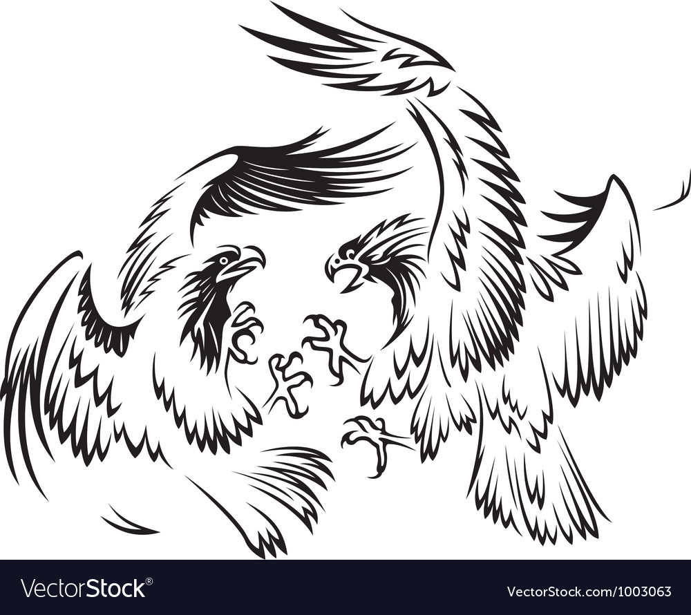 Fighting birds vector | Price: 1 Credit (USD $1)