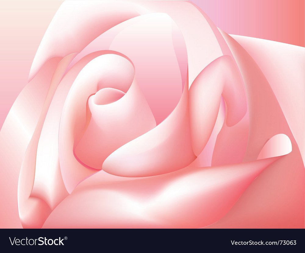 Rose vector   Price: 1 Credit (USD $1)