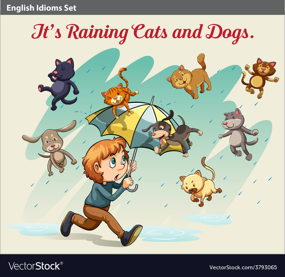 An idiom showing a rain with animals vector | Price: 1 Credit (USD $1)
