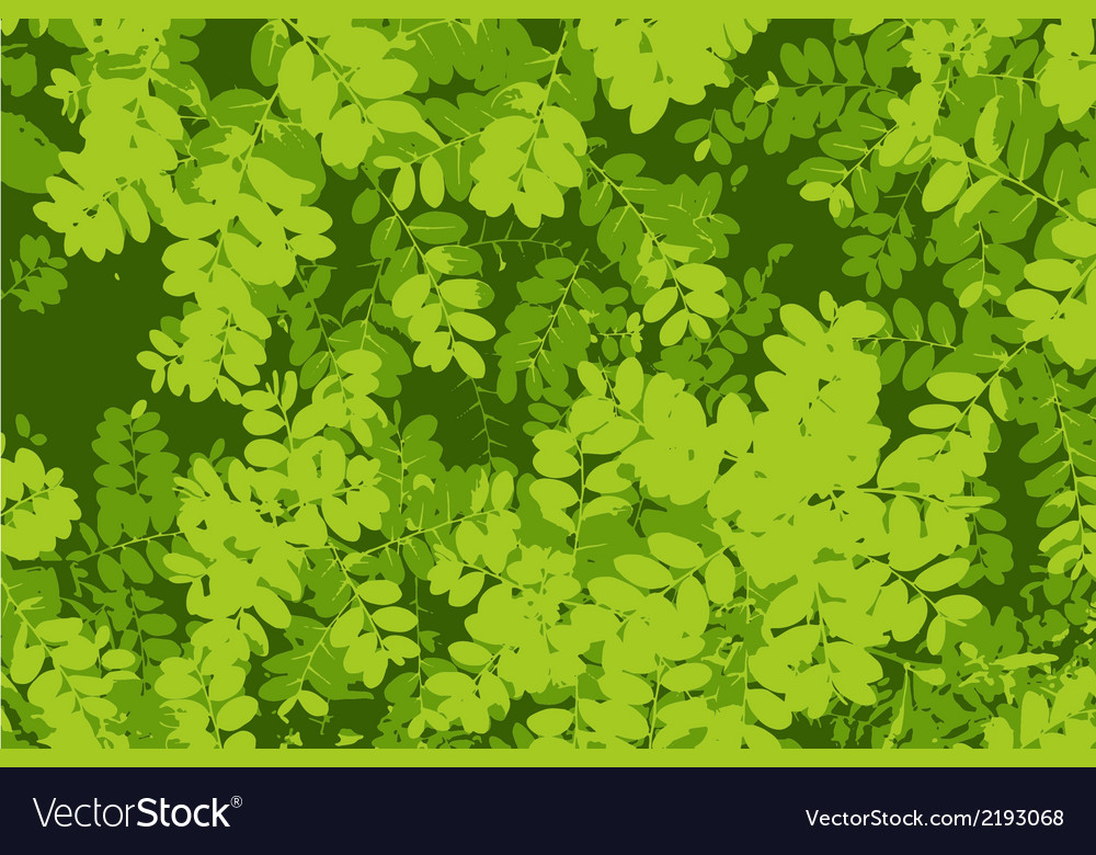 Tracing green leaf pattern vector | Price: 1 Credit (USD $1)