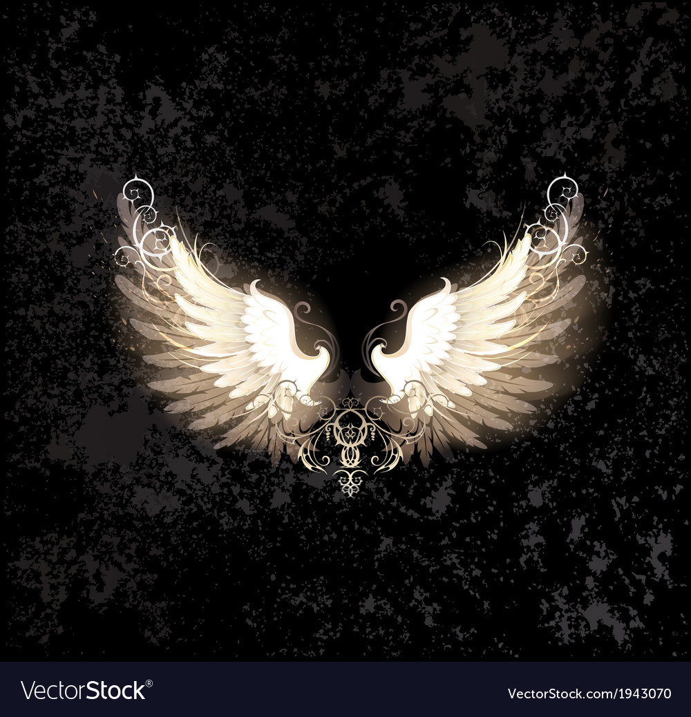 Light wings vector | Price: 1 Credit (USD $1)