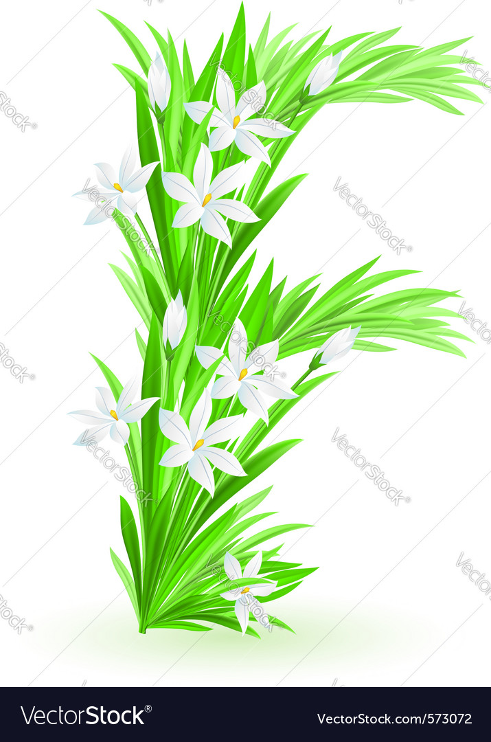 Spring flowers alphabet f vector | Price: 1 Credit (USD $1)
