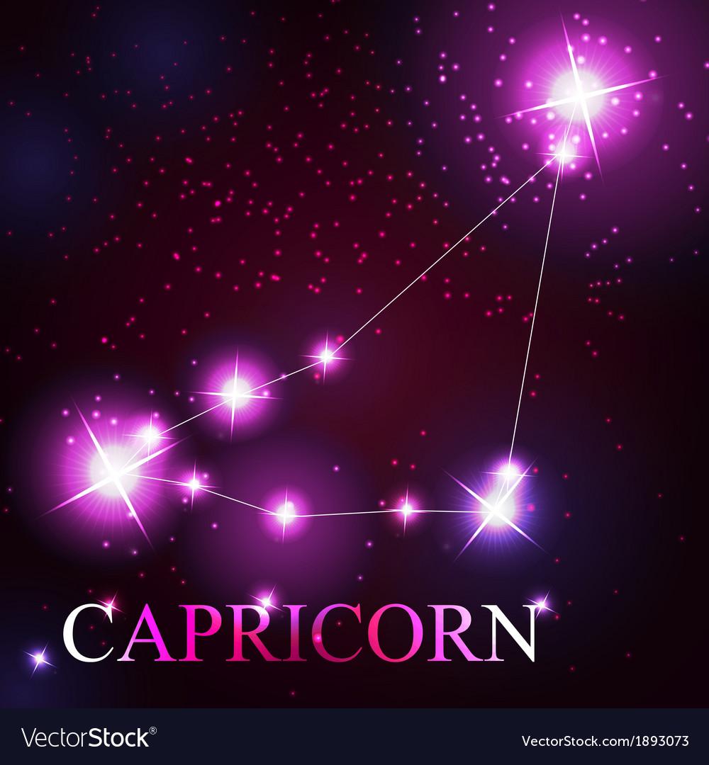Capricorn zodiac sign of the beautiful bright vector | Price: 1 Credit (USD $1)