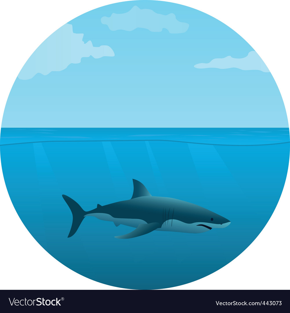Shark in the sea vector | Price: 1 Credit (USD $1)