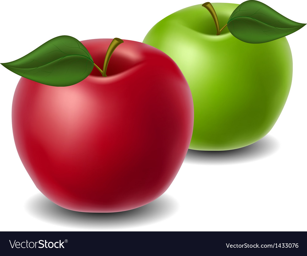Red and green apple vector | Price: 1 Credit (USD $1)