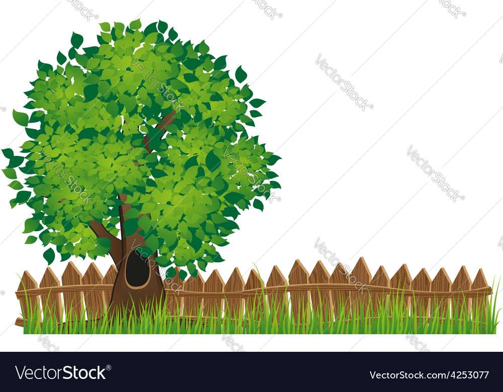 Fence and tree vector | Price: 3 Credit (USD $3)