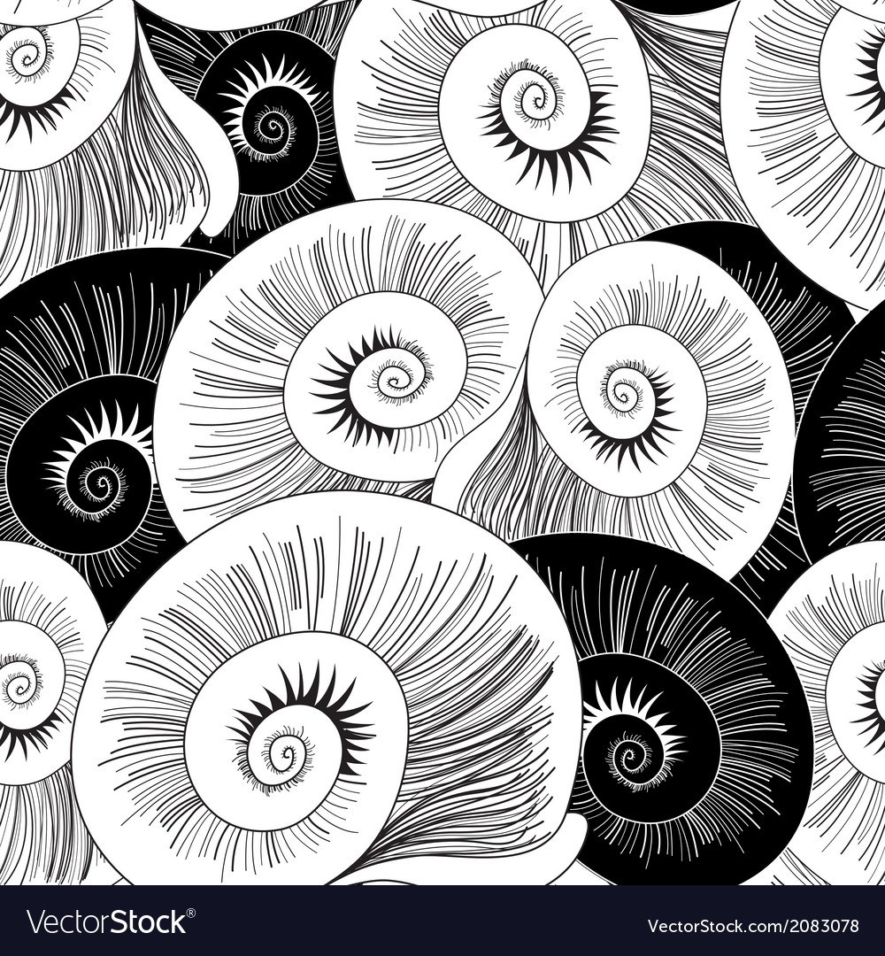 Graphic pattern of shells vector | Price: 1 Credit (USD $1)