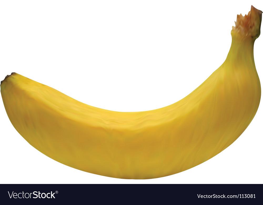 Banana mesh vector   Price: 1 Credit (USD $1)