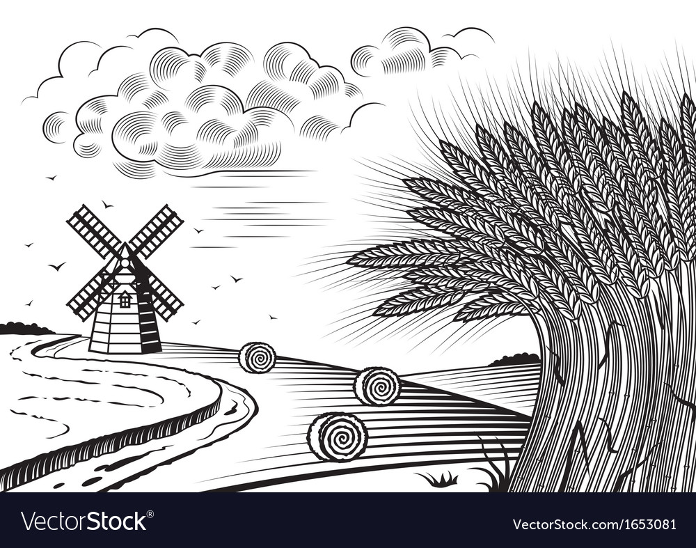 Wheat fields landscape black and white vector | Price: 1 Credit (USD $1)