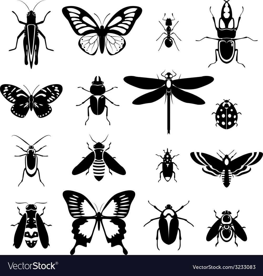 Insects icons set black and white vector | Price: 1 Credit (USD $1)