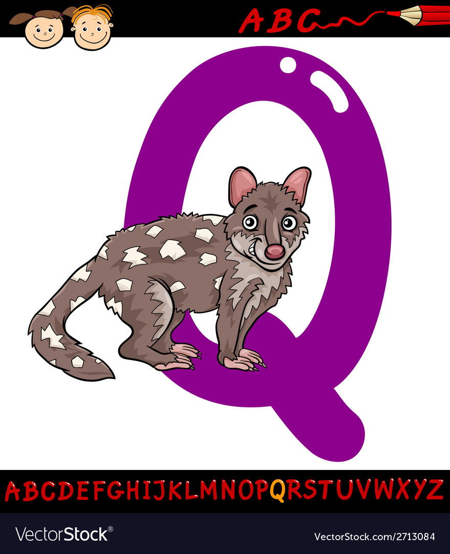 Letter q for quoll cartoon vector | Price: 1 Credit (USD $1)